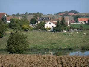 Besbre valley - River Besbre, herd of cows in a pasture, and houses in the Besbre valley