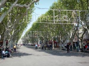Béziers - Paul-Riquet alley: promenade lined with plane trees