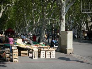 Béziers - Paul-Riquet alley: fruits and vegetables market, plane trees