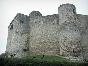 Billy castle - Medieval castle (fortress)