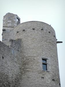 Billy castle - Tower of the medieval castle (fortress)