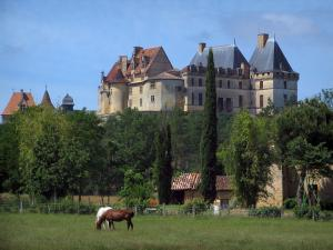 Biron castle - Castle, trees and horses in a prairie, in Périgord
