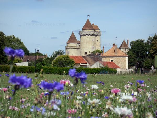 Blandy - Flowers in foreground with a view of the medieval castle of Blandy-les-Tours and houses of the village