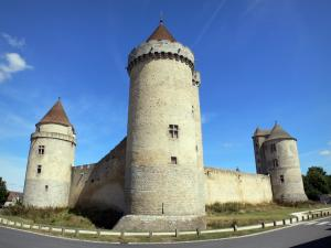 Blandy - Keep, towers and walls of the medieval castle of Blandy-les-Tours