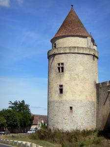 Blandy - Tower of the medieval castle