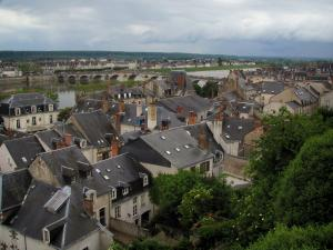 Blois - View of the roofs of the city, bridge and the Loire River