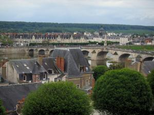 Blois - Trees, houses of the city, and bridge spanning the Loire River