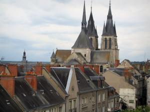Blois - Saint-Nicolas church (former Saint-Laumer abbey church) and houses of the city