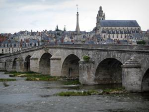 Blois - Bridge spanning the Loire River, Saint-Louis cathedral, and houses of the old town