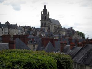Blois - Saint-Louis cathedral, houses of the old town, and trees