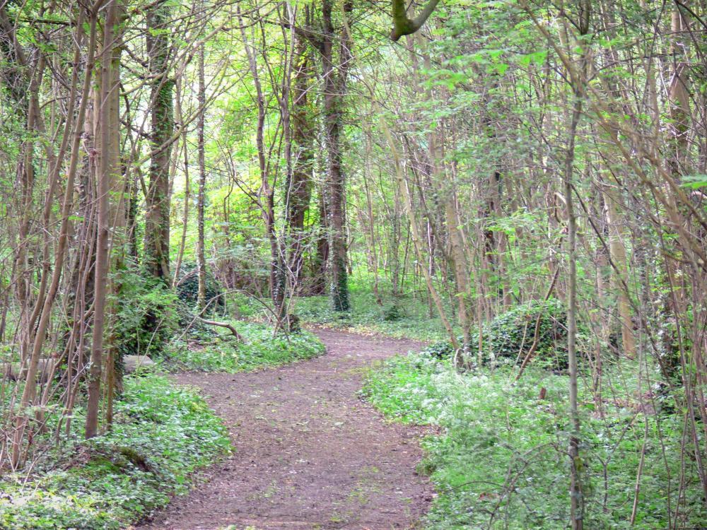 Camping Bois De Vincennes - Photos Le bois de Vincennes Guide Tourisme& Vacances