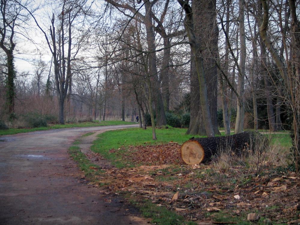 Camping Bois De Vincennes - Photos Bois de Vincennes 20 images de qualité en haute définition