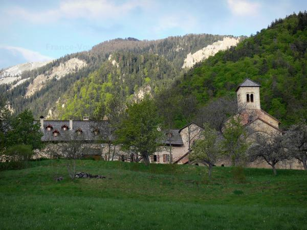 Boscodon forest - Tourism, holidays & weekends guide in the Hautes-Alpes