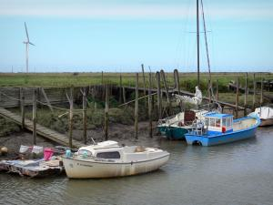Bouin - Champs port: moored boats and stilts