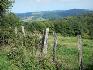 Bourbonnais landscapes - Bourbonnais Mountains: fence of a meadow and forest in background