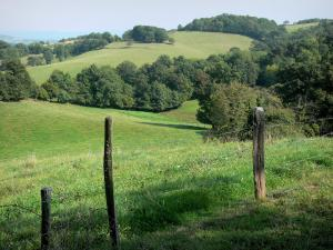 Bourbonnais mountains - Fence in a meadow, pasture and trees