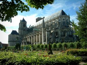 Bourges - Trees of the Archbishop's palace garden and the Saint-Etienne cathedral (Gothic architecture)