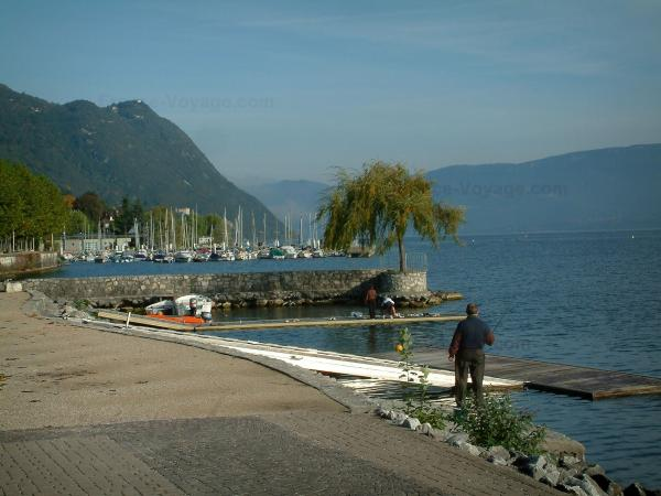 Bourget lake - Shore with a fisherman, pontoons, a tree at the water edge, sailport with its boats, lake and mountains