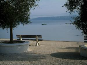 Bourget lake - Shore with olive trees and a bench with a view of the lake, a small fisherman's boat