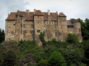 Boussac castle - Facade of the castle, shrubs and trees
