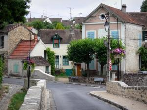 Boussy-Saint-Antoine - View of the houses in the town from the old bridge