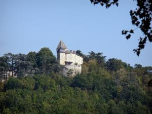 Brassac castle - View of the castle surrounded by greenery