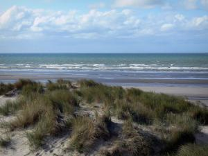 Bray-Dunes - Opal Coast: dune with beachgrass (psammophytes), view of the beach and the North Sea