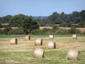 La Brenne landscapes - Hay bales in a field, shrubs and trees; in La Brenne Regional Nature Park