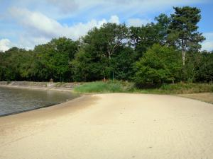 La Brenne Regional Nature Park - Beach of the Bellebouche lake and trees