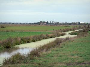 Breton marsh in the Vendée - Small waterway lined with meadows