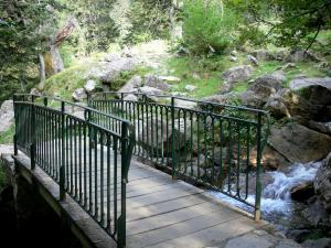 Bridge of Spain - Bridge of Spain (Pont d'Espagne) Nature site: small bridge spanning the Gave stream, rocks and trees in the Pyrenees National Park; in the town of Cauterets