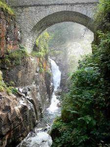 Bridge of Spain - Bridge of Spain (Pont d'Espagne) Nature site: stone bridge spanning the Gave stream, rock and vegetation in the Pyrenees National Park; in the town of Cauterets