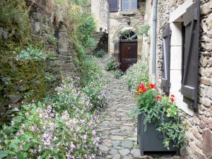 Brousse-le-Château - Paved street lined with flowers and stone houses of the medieval village