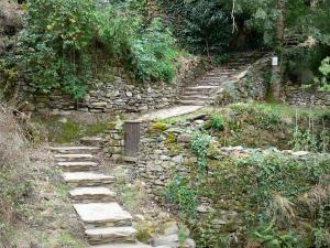 Brousse-le-Château - Stone steps lined with vegetation