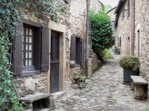 Brousse-le-Château - Paved street lined with stone houses