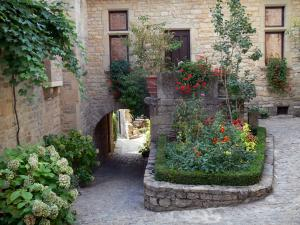 Bruniquel - Alley with flowers, porch and stone house