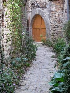 Bruniquel - Paved lane lined with plants and door of a stone house