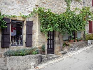 Bruniquel - Facade of a stone house with Virginia creeper