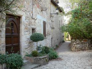 Bruniquel - Paved lane lined with stone houses