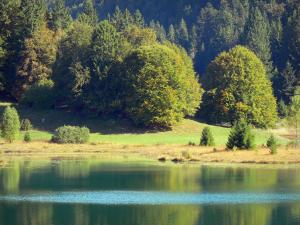 Bugey - Upper Bugey: Genin lake, meadow and trees