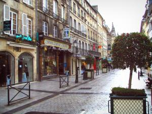 Caen - Buildings, shops, lampposts, and shrubs in jars in the Saint-Pierre street