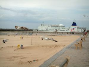 Calais - Opal Coast: gulls flying, benches on the dike-walk, sandy beach and passenger ship (ferry)