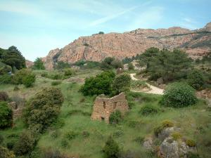 Calanche de Piana creeks - Grassland, bushes (scrubland) with the ruins of a stone house (sheepfold) and the red granite rock of creeks in background