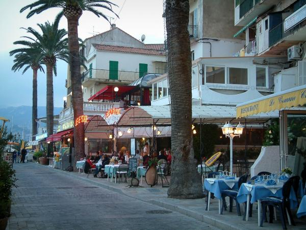 Calvi - Walk with palm trees, restaurants terraces and houses of the marine