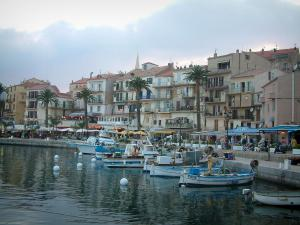 Calvi - Marina, fishing boats, quaysides, palm trees, café terraces and restaurants, houses