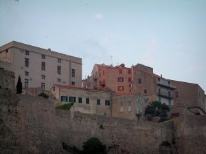 Calvi - Houses and ramparts of the citadel