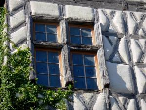 Camon - Half-timbered facade of the tall house