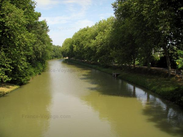 Canal du Midi - Canal lined with trees