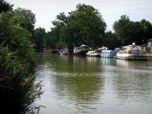 Canal du Midi - Vegetation, canal, moored barges and trees
