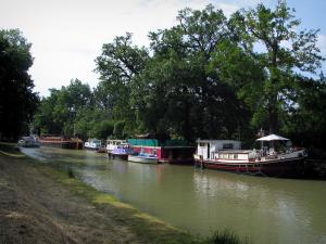 Canal du Midi - Bank, canal with barges and moored boats, and trees